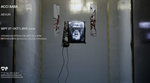 Solo Exhibition | aevum